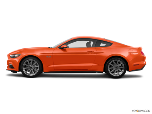 Competition Orange