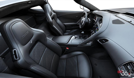 Jet Black Leather/Sueded Microfibre