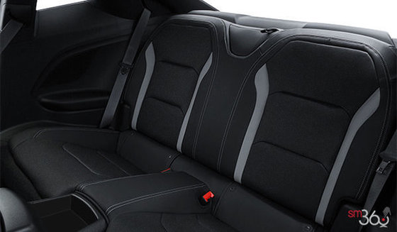 Jet Black Sueded Leather