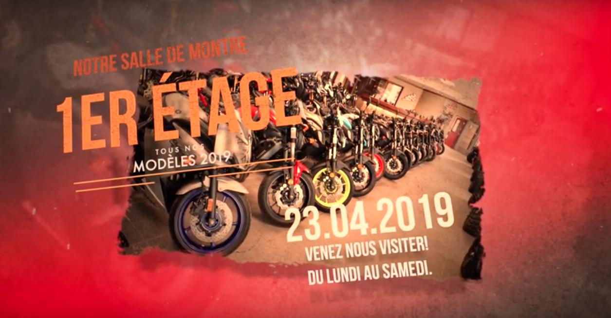 NOTRE SALLE DE MONTRE 2019