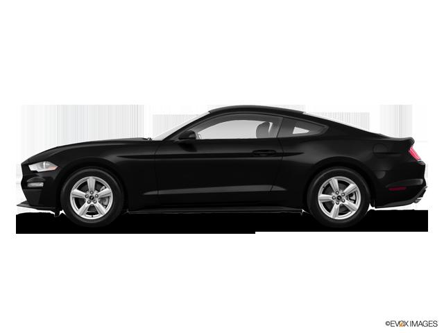 premium selection 1ac6a be3e5 Deragon Ford   Ford Mustang Coupé EcoBoost 2019 à vendre à Cowansville