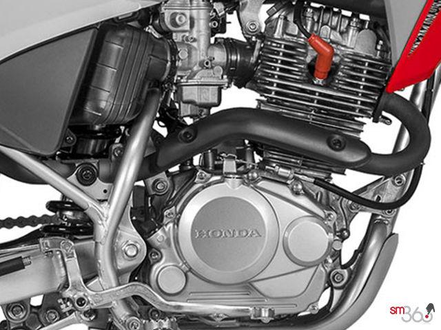 2019 Honda CRF230F STANDARD - Mierins Automotive Group in Ontario