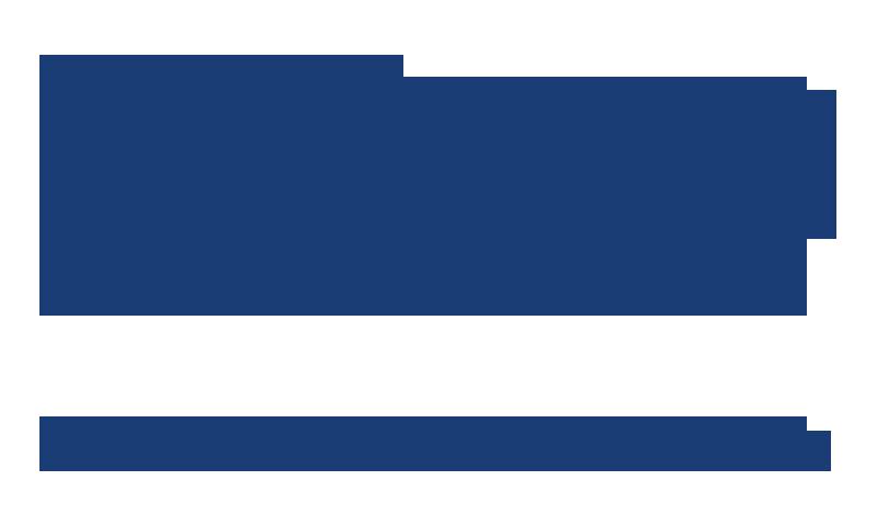 Leviko Hyundai