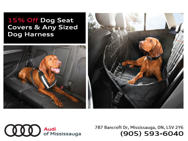 Save 15% Off On Dog Seat Covers & Harnesses