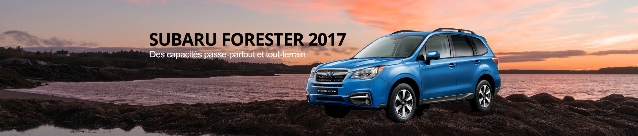 Header Subaru Forester 2017