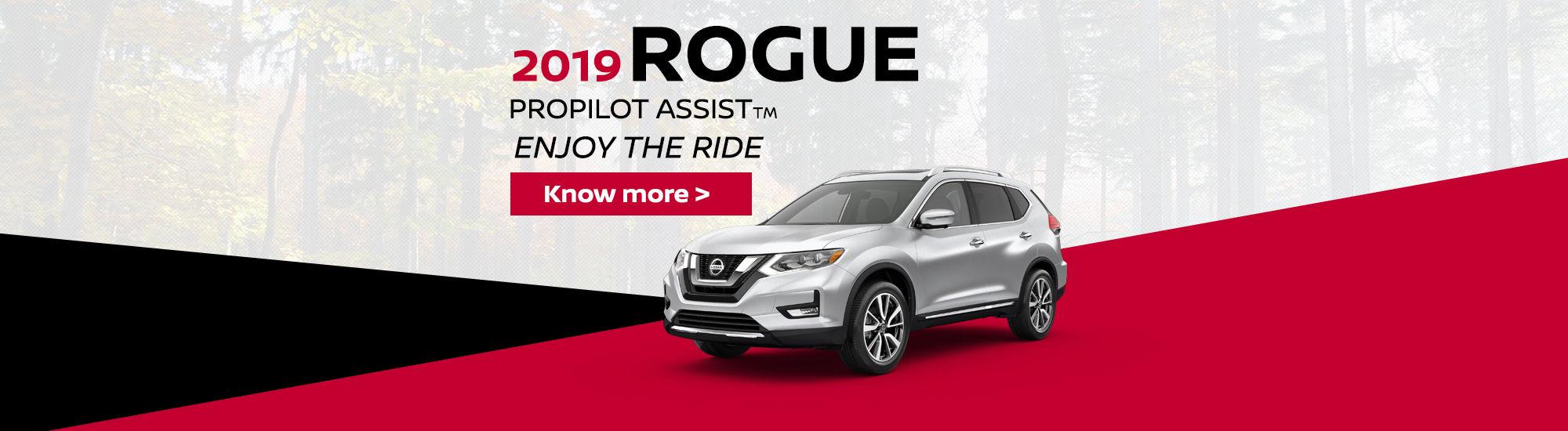 2019 Rogue