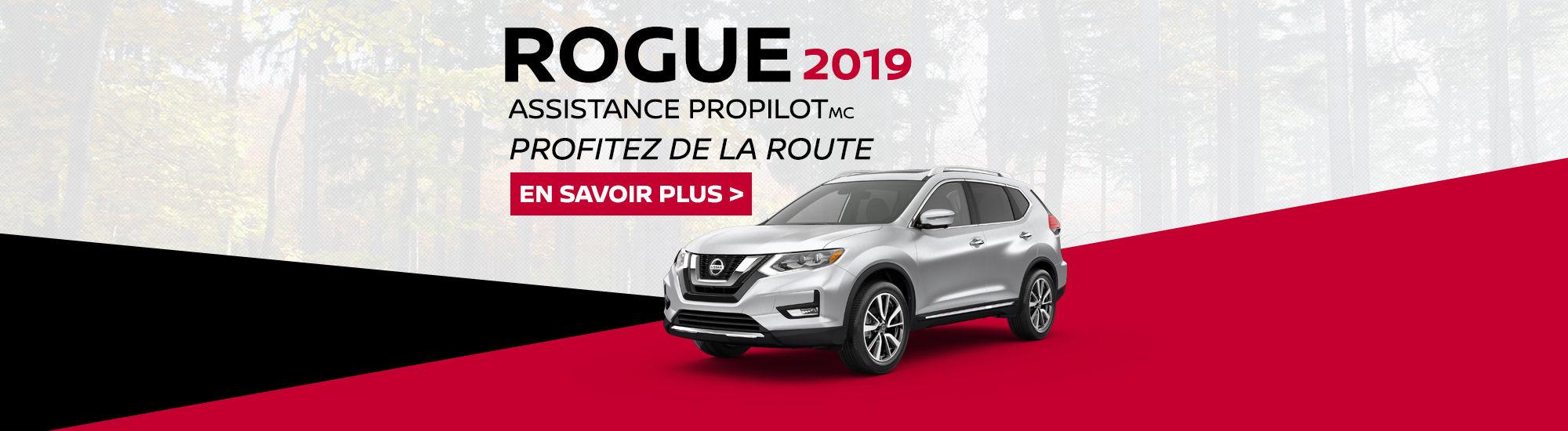 Rogue 2019