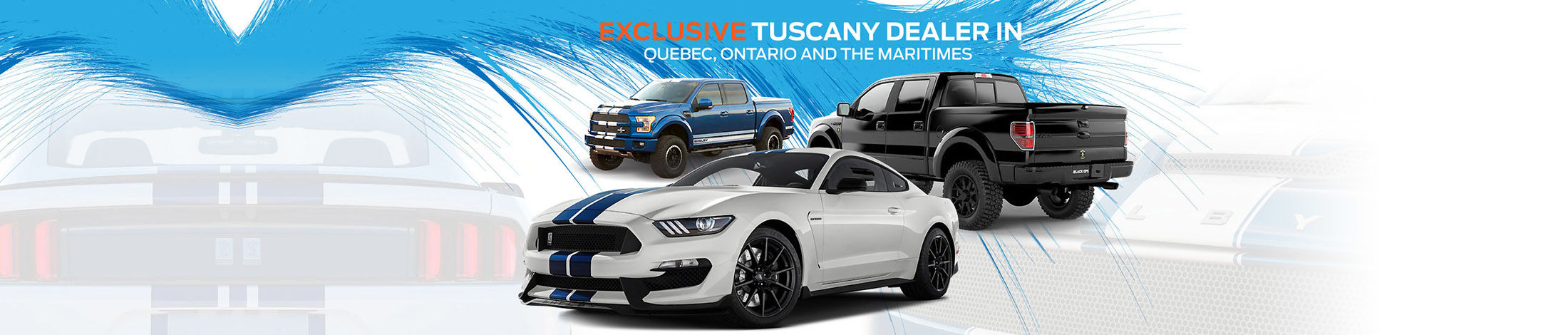 Exclusive Tuscany Dealer in