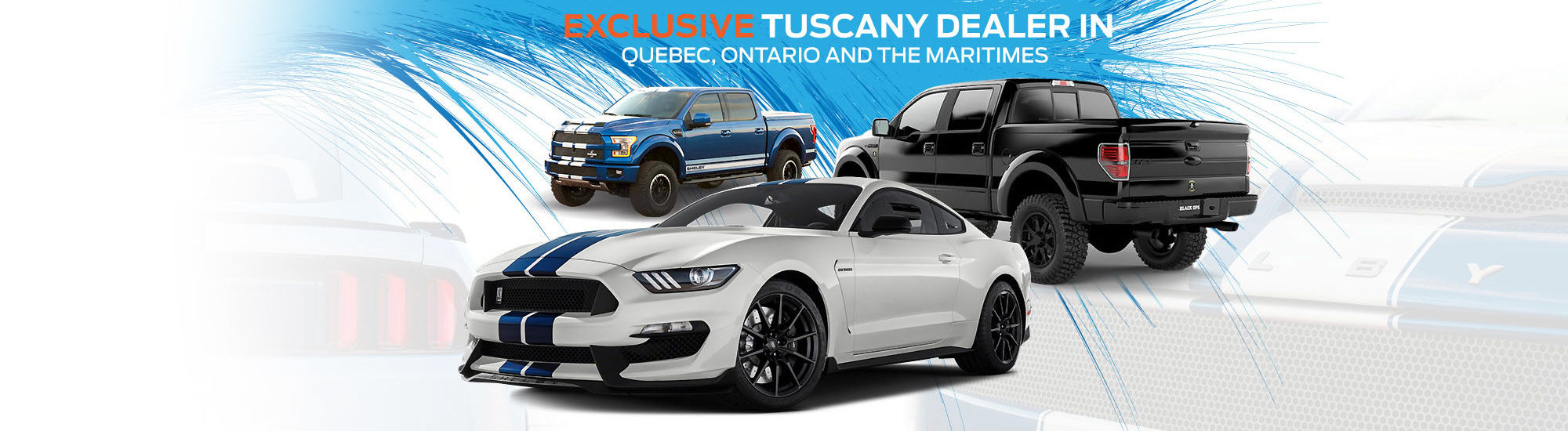 Exclusive Tuscany dealer