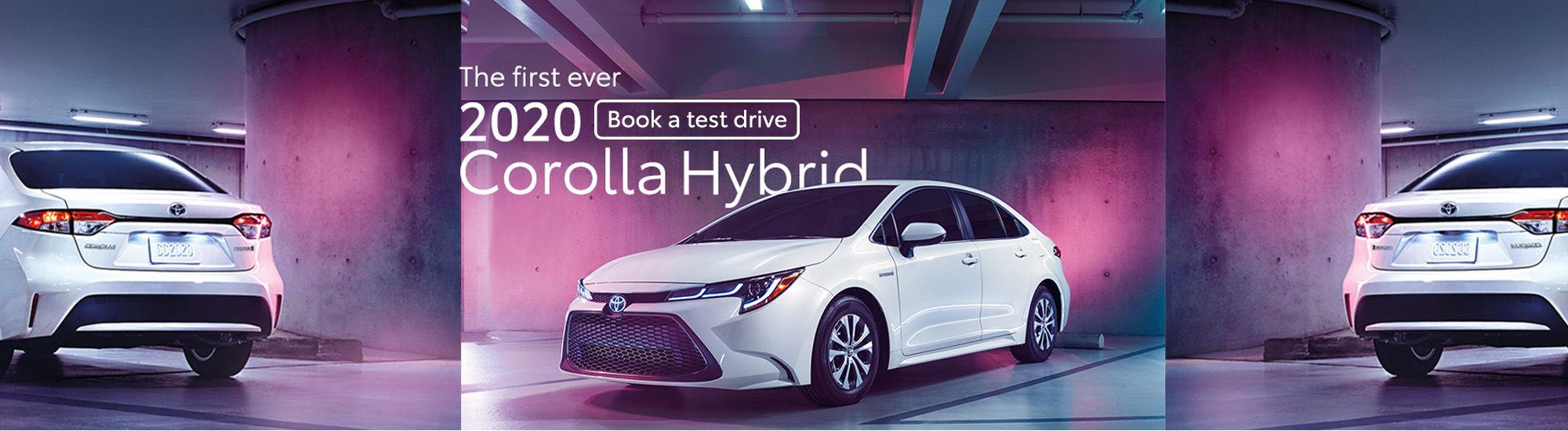 2020 Hybrid Corolla