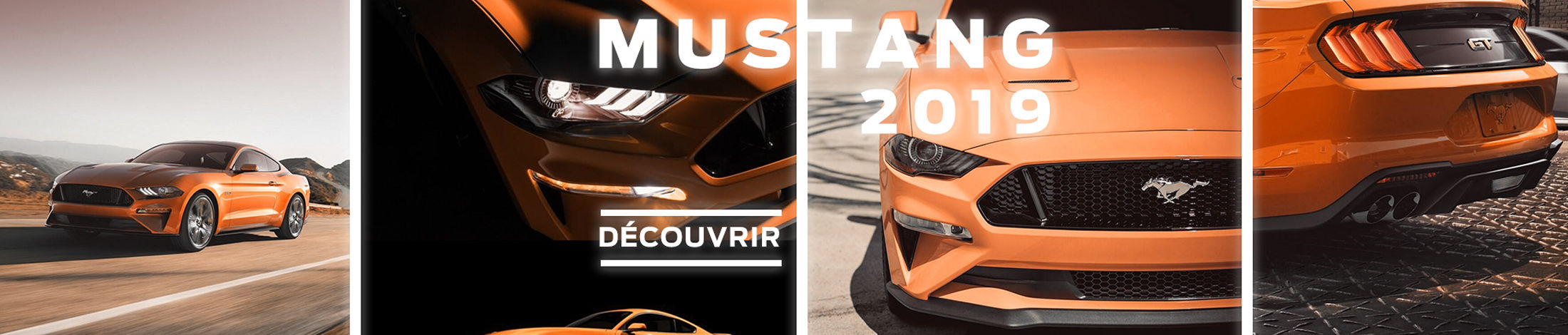 Mustang 2019 Ford
