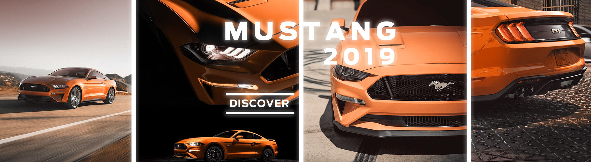 2019 Mustang Ford