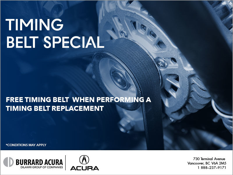 Free Timing Belt (Part Only)