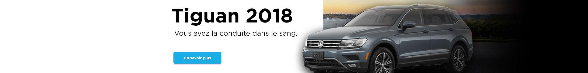 Tiguan 2018