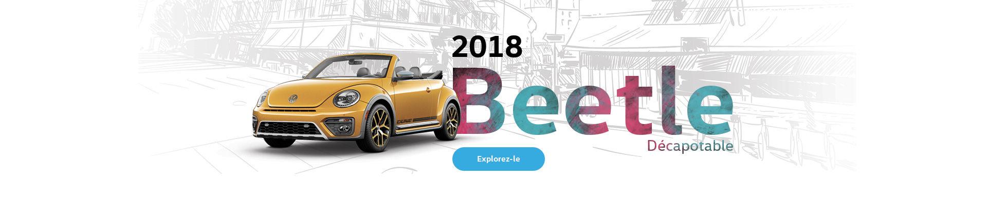 Beetle 2018