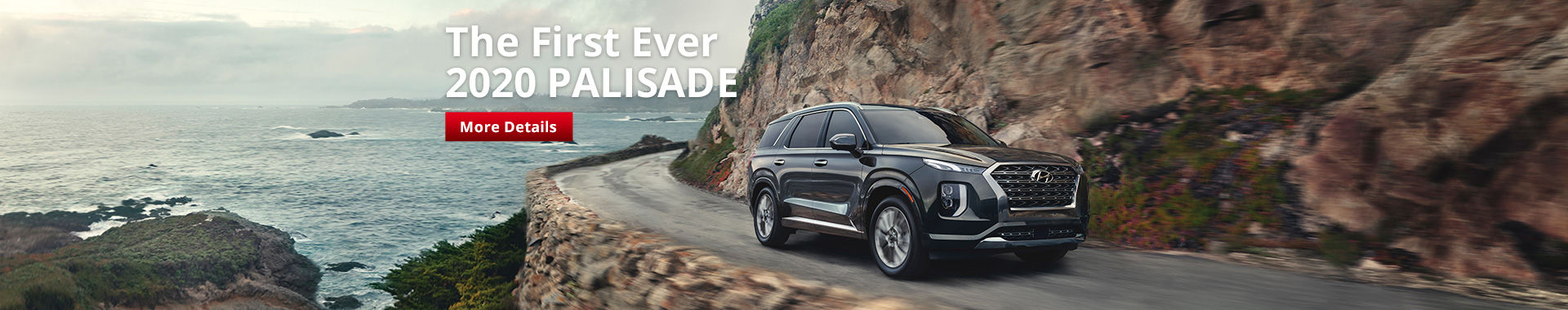 The First Ever  2020 PALISADE