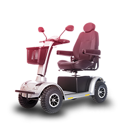 Auto-One Car Care and Service Centre | Mobility Vehicles