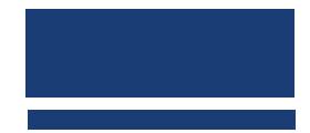 Logo de Léviko Hyundai Neuf