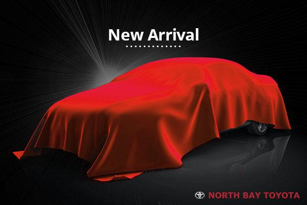 2019 Toyota Tundra SR 4.6L
