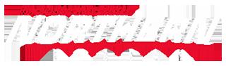 Northern Nissan Logo