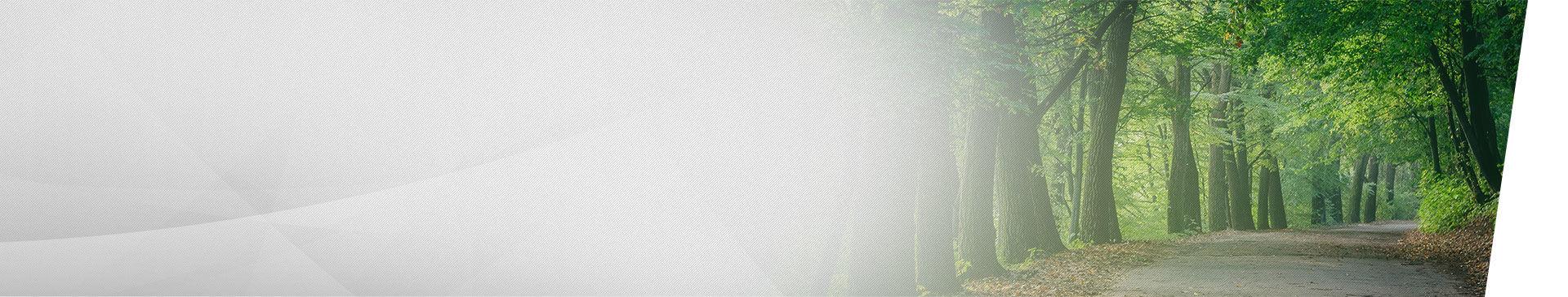 Corolla  2019 | Image d'arrière plan