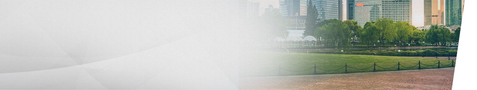 2019  Corolla | Background Image