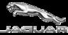 Jaguar Newfoundland Logo