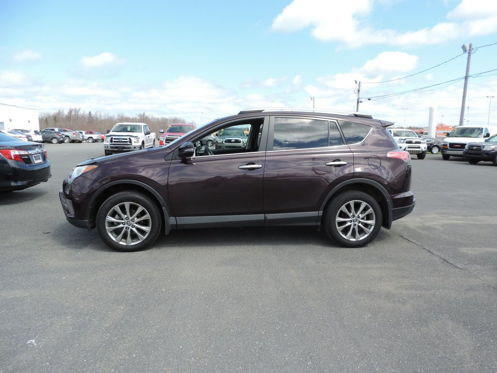 used 2016 toyota rav4 limited in used inventory macdonald auto group in nova scotia. Black Bedroom Furniture Sets. Home Design Ideas