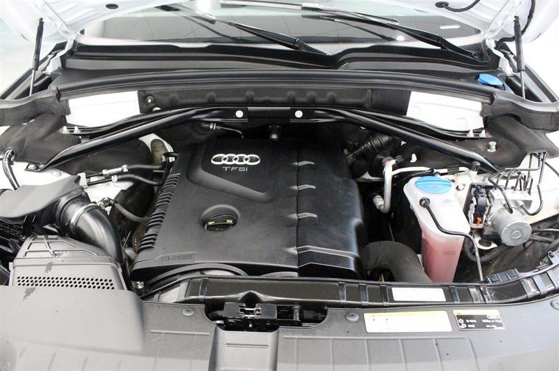 2017 Audi Q5 2.0T Progressiv quattro 8sp Tiptronic in Regina, Saskatchewan - 19 - w1024h768px