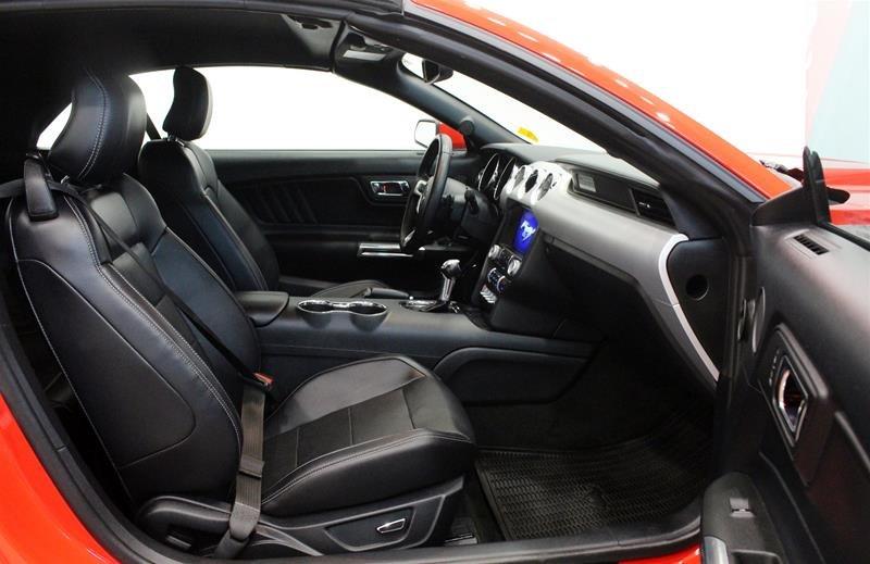 2016 Ford Mustang Convertible GT Premium in Regina, Saskatchewan - 14 - w1024h768px