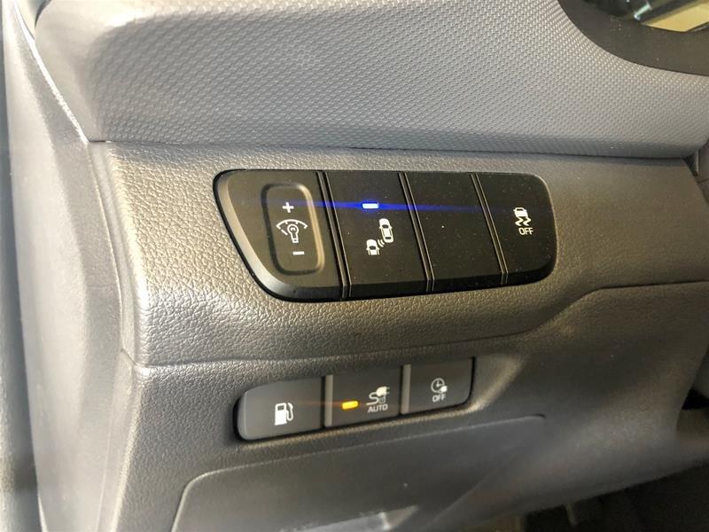 2019 Hyundai Ioniq Electric Plus PREFERRED in Regina, Saskatchewan - 6 - w1024h768px