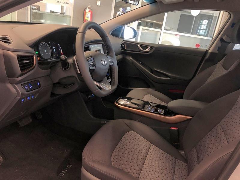 2019 Hyundai IONIQ EV Preferred in Regina, Saskatchewan - 5 - w1024h768px