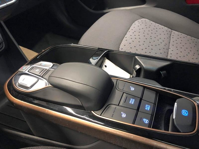 2019 Hyundai IONIQ EV Preferred in Regina, Saskatchewan - 10 - w1024h768px