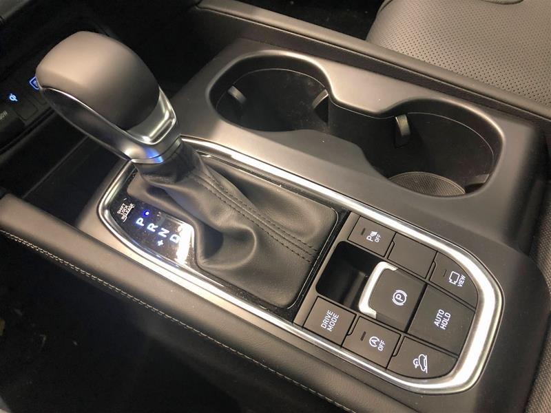 2019 Hyundai Santa Fe Ultimate AWD 2.0T in Regina, Saskatchewan - 11 - w1024h768px