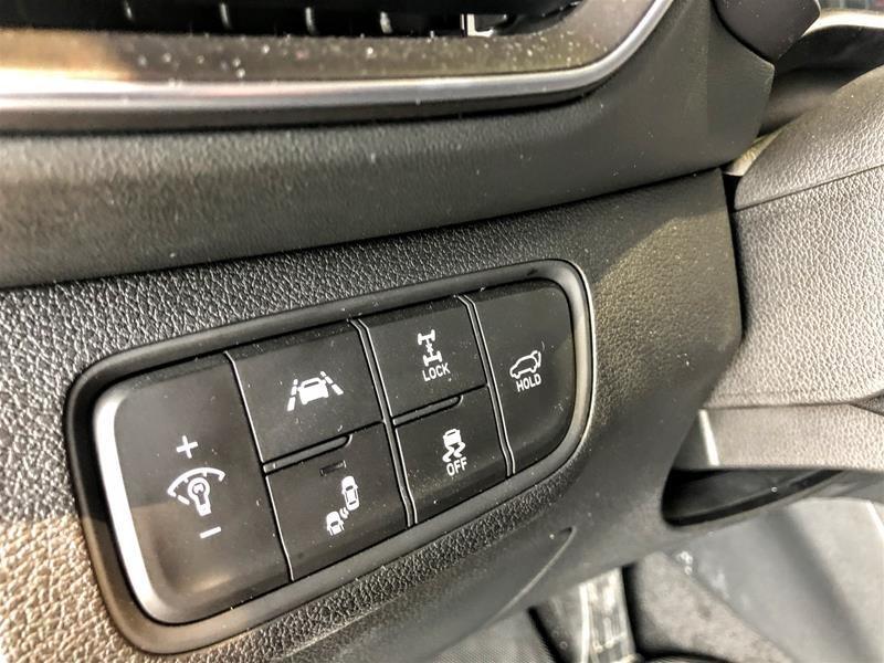 2019 Hyundai Santa Fe Luxury AWD 2.0T in Regina, Saskatchewan - 7 - w1024h768px