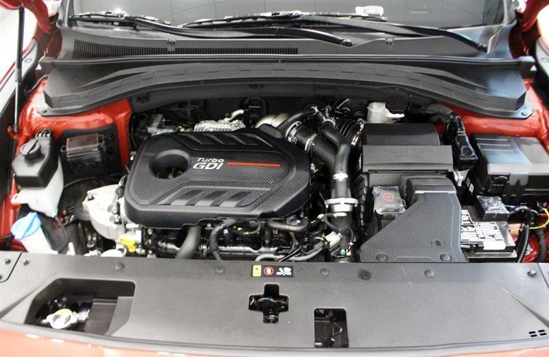 2019 Hyundai Santa Fe Luxury AWD 2.0T in Regina, Saskatchewan - 19 - w1024h768px