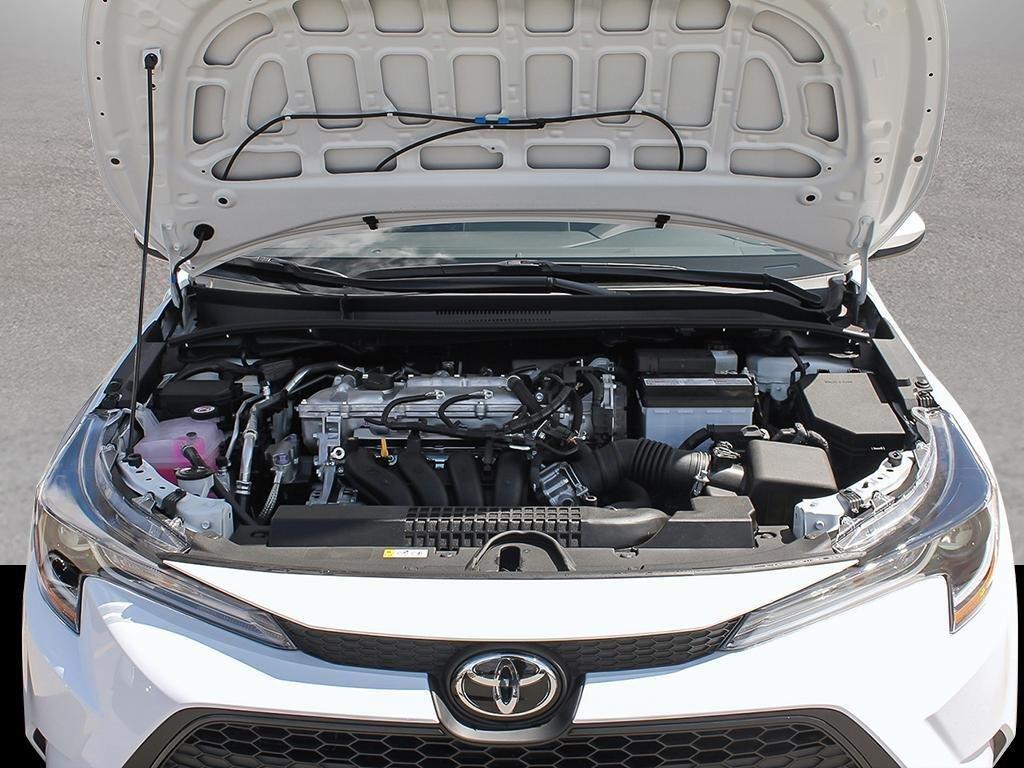Toyota Corolla 4-door Sedan LE CVT 2020 à Verdun, Québec - 6 - w1024h768px