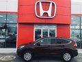 Honda CR-V SE / AWD / JAMAIS ACCIDENTÉ 2015