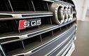 Audi SQ5 3.0T Technik 2015