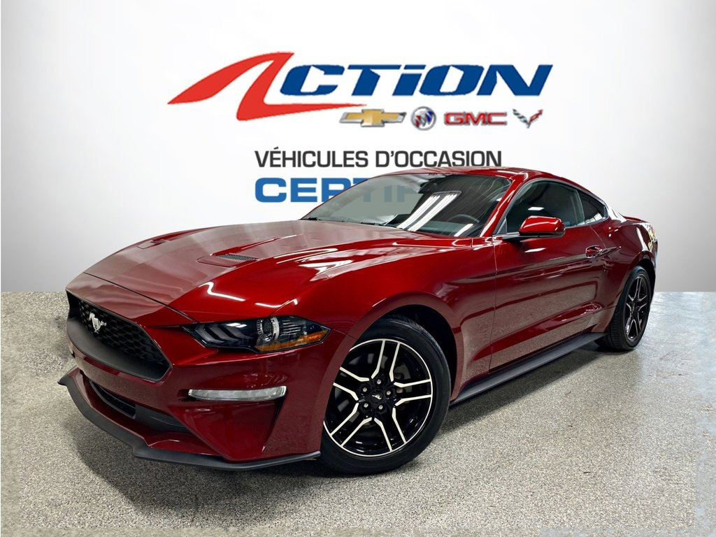 Ford Mustang 2019 EcoBoost - Bas Km - Nouvelle Arrivage