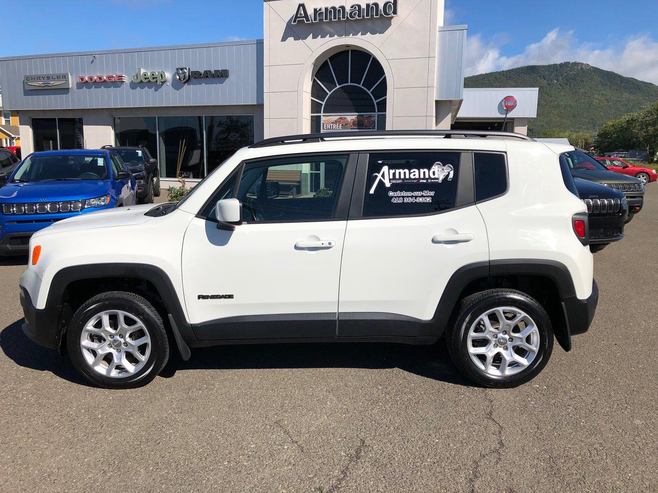 Jeep Renegade 2018 North