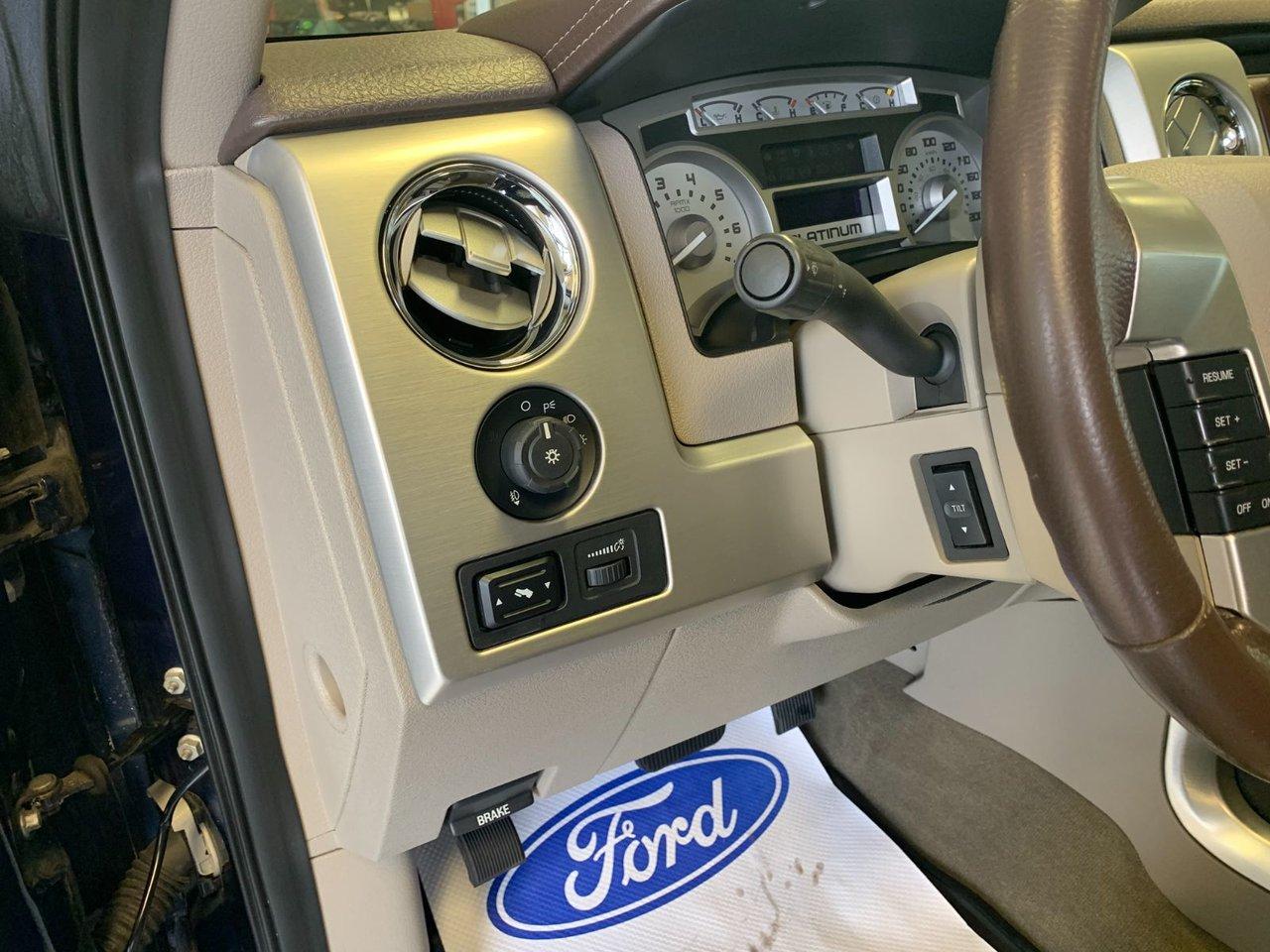 2009 Ford F-150 PLATINUM FULL