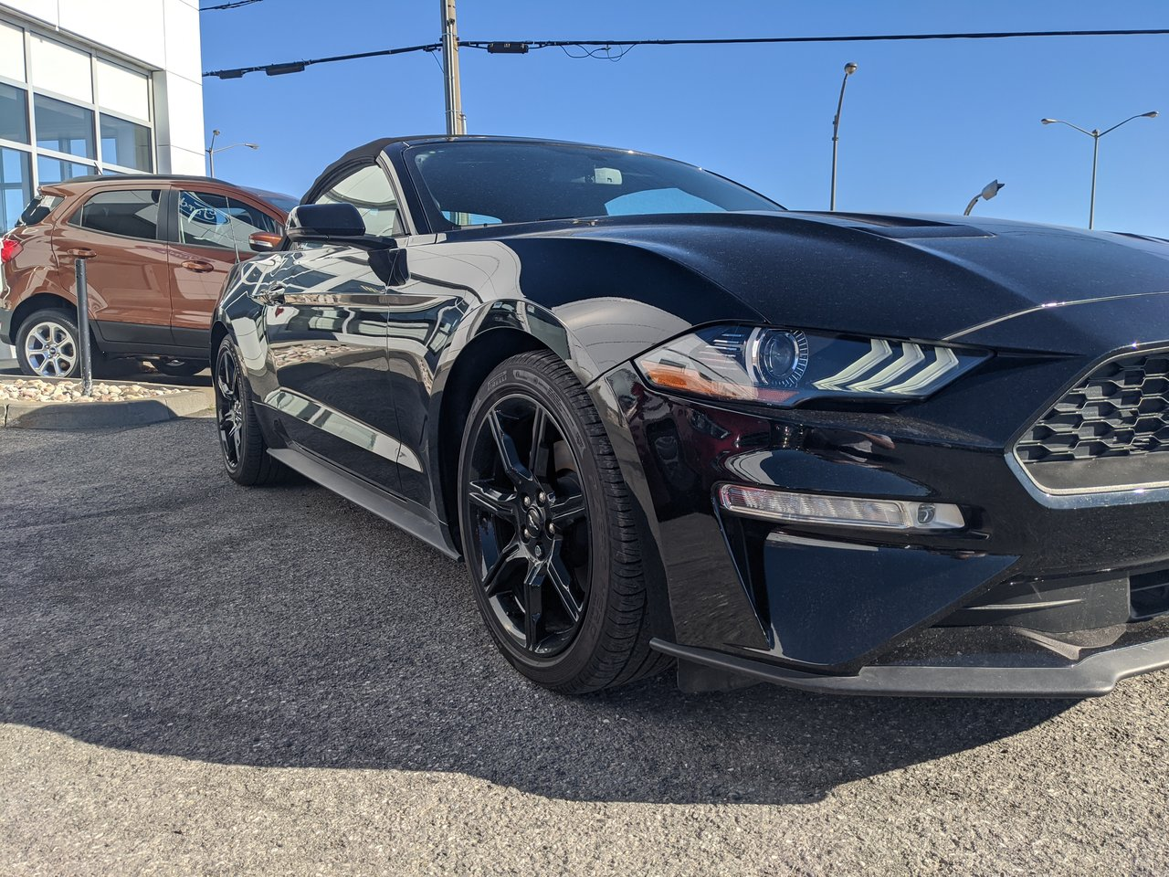 2019 Ford Mustang Premium EcoBoost