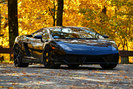 Lamborghini Gallardo 2009