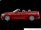 2019 BMW 2 Series Cabriolet 230i xDrive