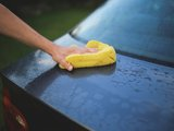Keep Your Car Clean During Lovebug Season