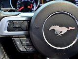 Ford Mustang V6 3,7L+MAGS 18