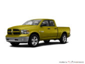 National Safety Yellow