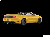 Triple Yellow Tri-Coat