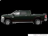 Black Forest Green Pearl/Walnut Brown Metallic